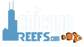 ChicagoReefs Local Community - Powered by vBulletin